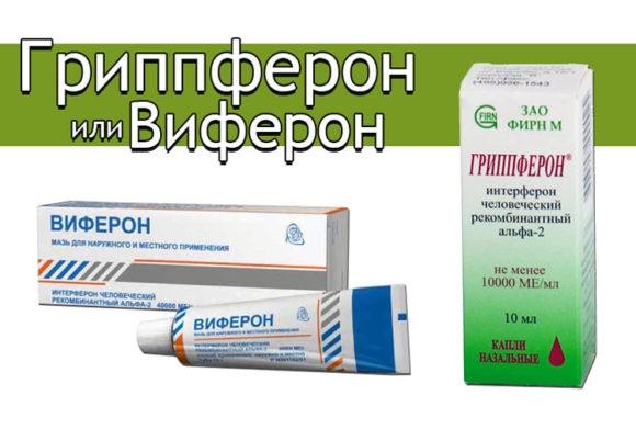 бесплатный адвокат  Архангельск